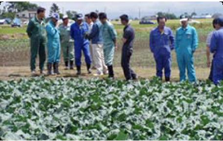 クリーン農業への取り組み