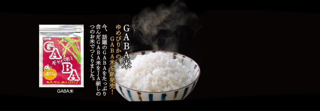 gaba1-3-1040×360